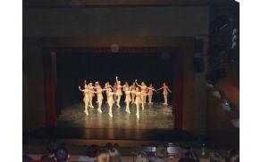 baletniveervkdlenart015.jpg