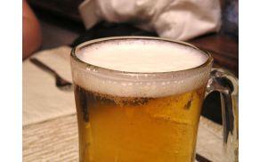 Prepovedi popivanja na javnih mestih v Ljubljani ne bo.