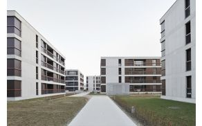 Tudi sosesko Polje II je projektiralo podjetje Bevk Perović arhitekti d.o.o. Foto: Arhiv Bevk Perović arhitekti d.o.o