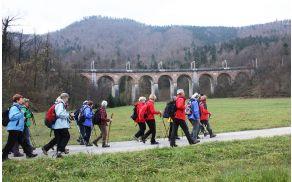 Preko Dolinskega mostu pri Borovnici  je pričel voziti vlak daljnega leta 1856
