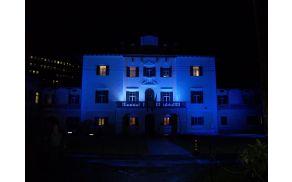 Društvo med drugim vsako leto modro osvetli pročelje Coroninijevega dvorca.
