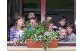 Podarjeno cvetje krasi okenske police