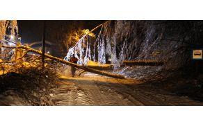 Padlo drevo je v nedeljo zvečer zaprlo glavno cesto Ljubljana–Polhov Gradec pri kraju Hruševo.