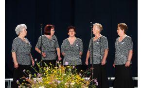 Nastop na reviji pevskih zborov ZDIS V Slovenj Gradcu