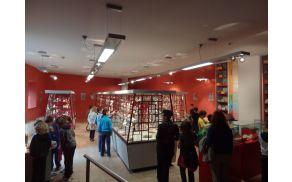 Vitrine ajdovskega muzeja