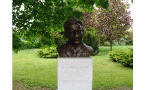 Partizanski zdravnik dr. Aleksander Gala - Peter
