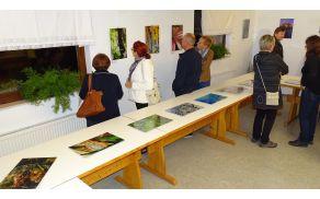 Na razstavi so bile  predstavljene fotografije iz naše okolice (foto: Stane Markovič)