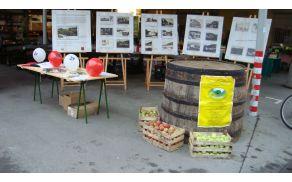 Del razstave starih razglednic Lukovice, brdska jabolka in promocijski material Občine Lukovica