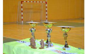 Pokali za najboljše tri ekipe ter unikatni modeli ježa nogometaša za posebne igralce.