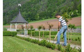 Za urejenost rož in zelenja v grajskem parku letos skrbi podjetje Lavanda.