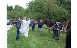 Blagoslov konj pri sv,Juriju nad Trnovcem