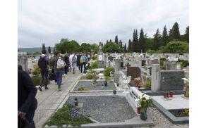 Na mirenskem pokopališču so si ogledali absurdno mejo, ki je včasih pokopališče delila na dva dela. Foto: Alenka Ožbot