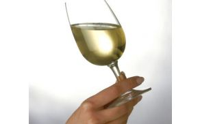 V Ljubljani se bo predstavilo preko 120 ponudnikov vin.