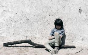 Drevo je večkrat nagrajeni celovečerni prvenec mlade režiserke Sonje Prosenc