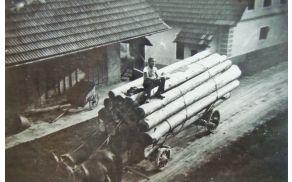 Poldetov France pri spravilu hlodovine okrog leta 1950