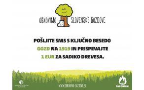gozdovi.jpg