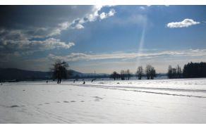 Užitki na breškem polju (foto: Miha Vizjak)
