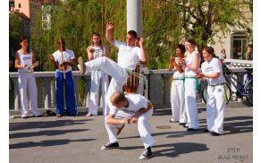 Dan plesa 2010, Foto: Blaž Nemec