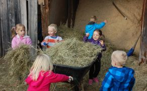 Otroci smo konje krmili s senom.