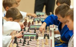 Judoisti v šahovski partiji