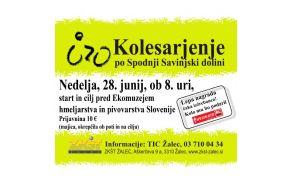 kolesarjenje-pospodnjisavinjskidolini2015.jpg