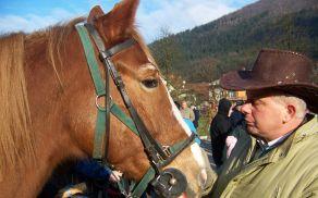 konjeniki.jpg
