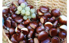 kostanj_grozdje.jpg