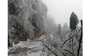 Žled in sneg povzročila težave tudi na Kobariškem. Foto: N.Šerbec
