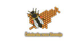 Pomagajmo k uresničitvi projekta 20. maj – dan čebele.