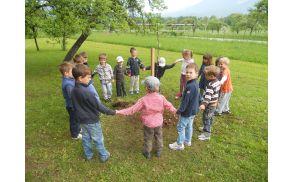 Otroci Vrtca Bled plešejo okoli dveh novih tepk.