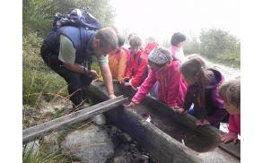 Najmlajši, prvošolčki, so odprli letošnjo sezono s poučnim in zabavnim izletom za jezerom. Foto: Jožica Kašca