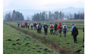Čez jarke in močvirne travnike proti Jurčevem šotišču  (foto Sonja Zalar Bizjak)