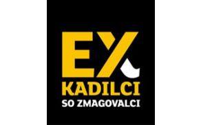 Ex kadilci, Evropska komisija, iCoach