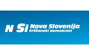 nsi_logo.jpg