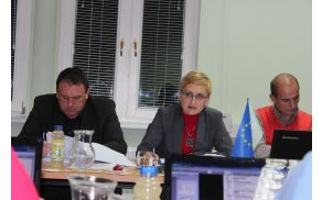 Irena Špegel Jovan podaja osnutek proračuna za leto 2015.