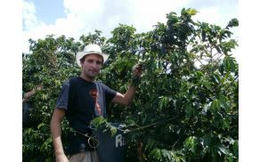 *Adam Koštomaj je obiskal plantažo kave in spremljal celoten proces.