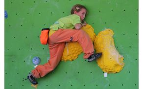 plezanje-log-dp-2014-5.jpg