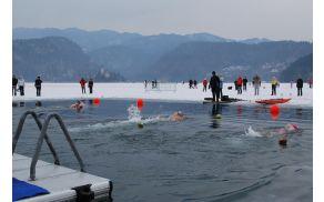 Pokal Bleda v lednem plavanju.