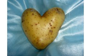 potato-love-1524966.jpg