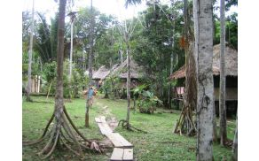 Ayahuasca Spiritual Healing Center DAS v amazonskem pragozdu. Foto: arhiv Lenke Raspet