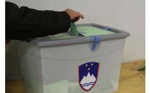 Za Pahorja glasovalo 64,79 odstotka Log-Dragomerčanov.