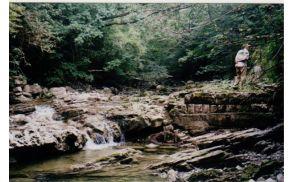 Mejna reka Idrija, Čez njo so vodile tihotapske poti. Foto: osebni arhiv