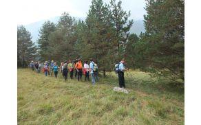 Lepa sprehodna pot okoli Solbice