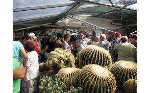 Seče pri Portorožu - Vrt kaktusov