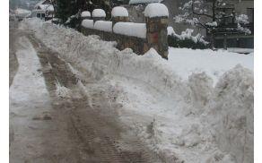 sneg-2009-old2.jpg