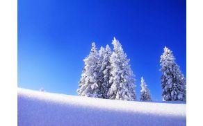 sneg-v.jpg