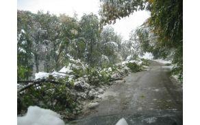 snegolom_29.10.2012_137.jpg