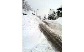 snegzasip.jpg
