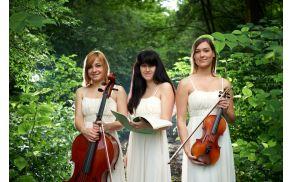 Klavirski trio Amarilis