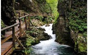 Soteska Vintgar, ki jo je izdolbla reka Radovna.